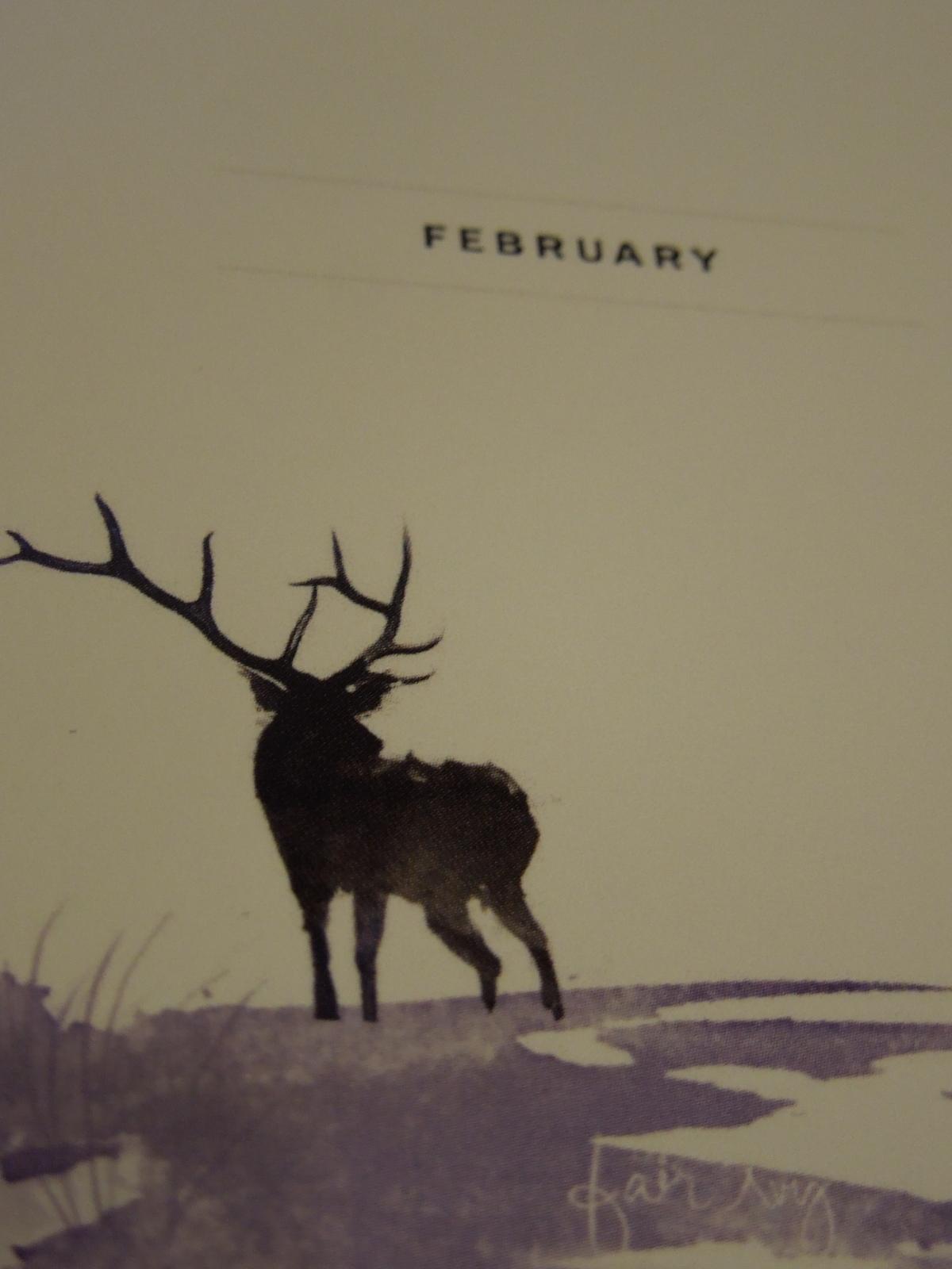 Fair Ivy: February2015