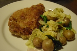 Pork Shnitzel with Warm Cabbage & Potato Salad
