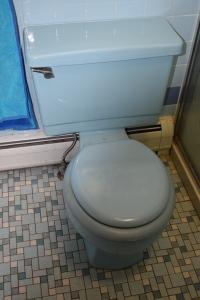 blue-toilet